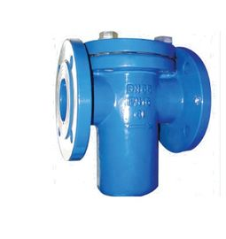 BS DN50 - DN600 Y Type Strainer Cast iron Simplex Basket Manual Power
